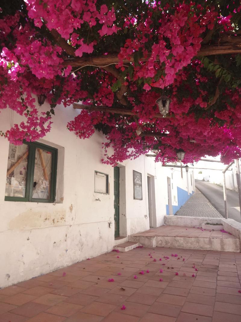 Mon voyage à Carvoeiro au Portugal
