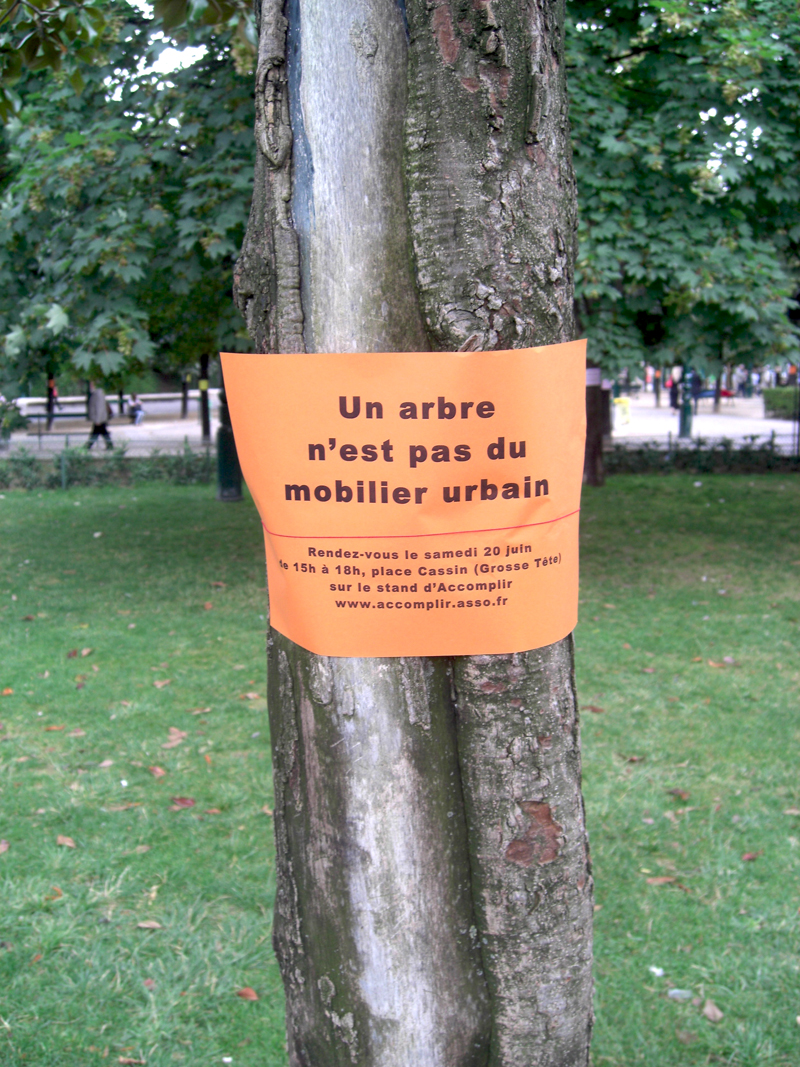 Arbres arrachés au Jardin des Halles à Paris