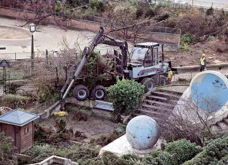 Abattage des arbres du Forum des Halles